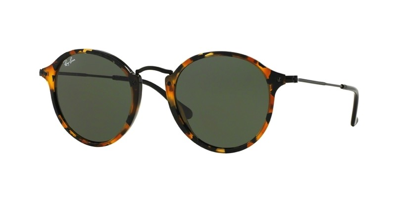 Ray-Ban-Sunglasses-0RB2447__1157_890x445