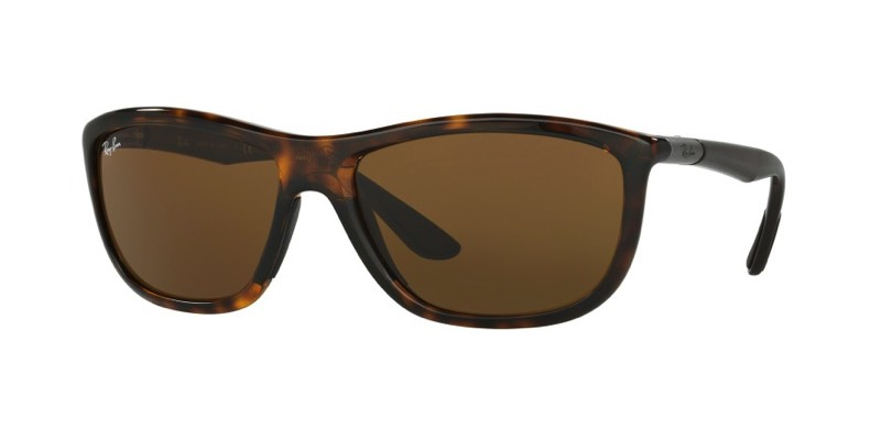 Ray-Ban-Sunglasses-0RB8351__622173_890x445